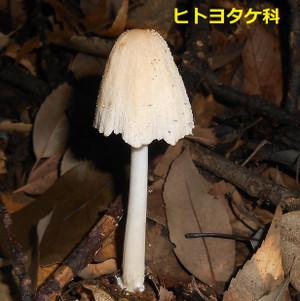 Dscn0465_2